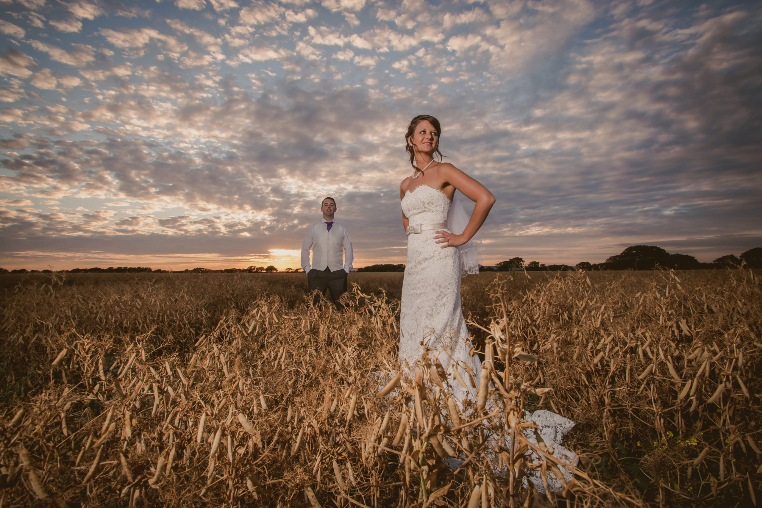 couple standing in a cornfield at sunset